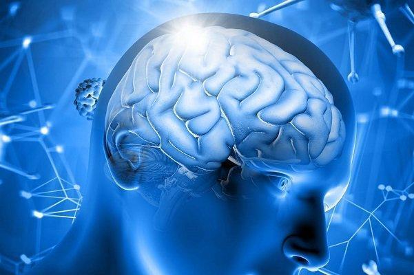 مغز زنان 3 سال از مغز مردان جوان تر است