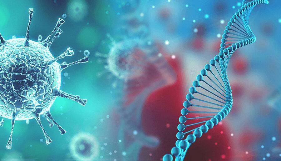 تصاویر جدید از ویروس کرونا پس از کشف دانشمندان روسی