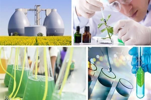 زیست فناوری صنعتی برگ برنده صنایع کشور است