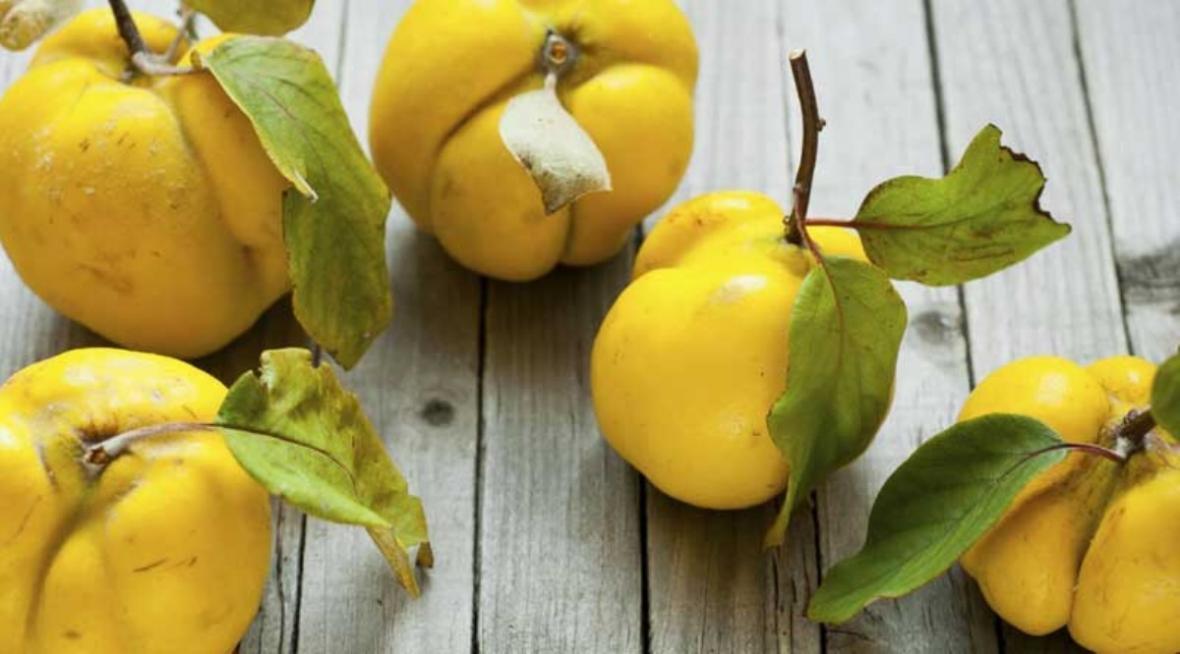 خواص شگفت انگیز میوه به را اینجا ببینید
